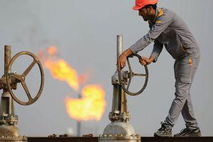 Giá dầu lao dốc, OPEC chịu áp lực vì quá lạc quan