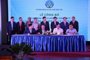 Việt Nam sản xuất thành công vắc-xin lở mồm long móng