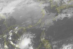 Các địa phương chủ động ứng phó bão số 8
