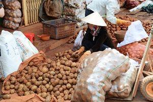 Buộc ghi nhãn hàng hóa có giảm nông sản ngoại 'đội lốt' hàng Việt?
