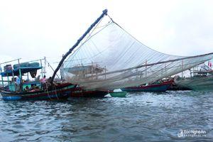 Ngư dân Nghệ An trúng đậm mùa ruốc biển