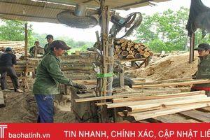 Khoảng 50 - 80% lợi nhuận gỗ vườn, gỗ rừng trồng rơi vào túi 'đầu nậu'!