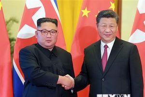 Chủ tịch Trung Quốc sẽ thăm Hàn Quốc và Triều Tiên vào năm tới