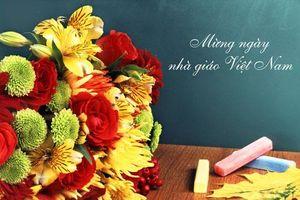 Ngày Nhà giáo Việt Nam: Những món quà ý nghĩa tri ân thầy cô