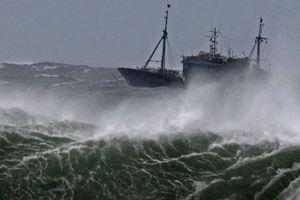 Chủ động đối phó với áp thấp nhiệt đới khu vực biển phía Nam và mưa trên diện rộng