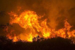 Mỹ: San Francisco chìm trong khói độc do cháy rừng tại bang California