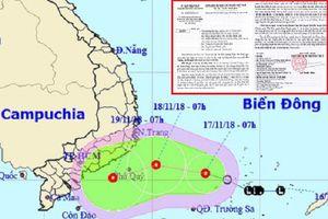 TP.HCM: Triển khai các giải pháp phòng tránh, ứng phó với áp thấp nhiệt đới