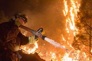 Cháy rừng kinh hoàng ở California: Hơn 1 tuần vẫn chưa thể dập tắt