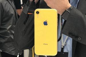 Chuyên gia phân tích nhận định Apple đang 'ngậm trái đắng' với iPhone XR