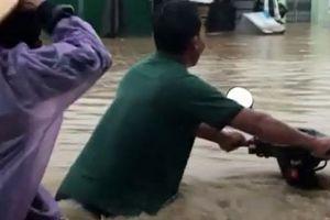Clip: Mưa lũ gây ngập nặng, nhiều hộ dân ở Ninh Thuận phải di dời