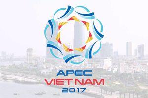 20 năm Việt Nam gia nhập APEC: Nâng tầm vị thế