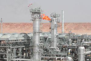 Niger khám phá mỏ dầu mới gần biên giới với Algeria