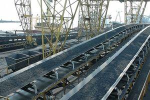 TKV nâng cao năng suất chất lượng nhờ ứng dụng khoa học công nghệ