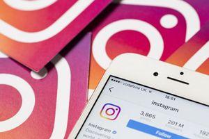 Công cụ tải xuống toàn bộ dữ liệu trên Instagram bị lỗi rò rỉ mật khẩu