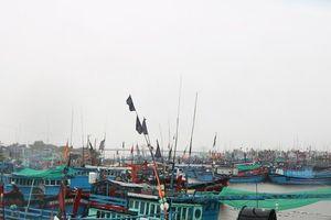 Ninh Thuận: Khẩn trương phòng tránh thiệt hại trước diễn biến của áp thấp nhiệt đới