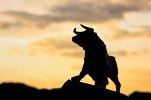 Thị trường tuần 12/11-16/11: Giao dịch thiếu thanh khoản, cổ phiếu 'penny' sẽ lên ngôi?