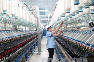 Tái cơ cấu doanh nghiệp Nhà nước: Chậm thay đổi cả về lượng và chất