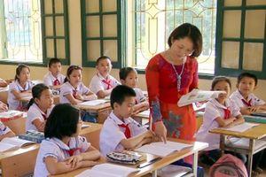 Giáo viên phải bỏ nghề, đi xuất khẩu lao động vì áp lực, lương thấp