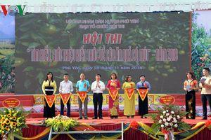 Sôi động Ngày hội cam Phù Yên - Sơn La