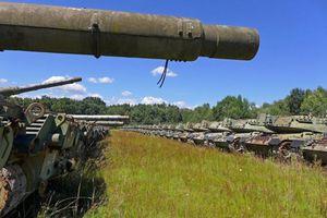 Bất ngờ lớn trước 'nghĩa địa xe tăng' bí mật của Quân đội Italia