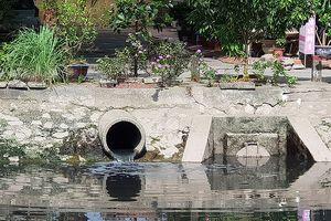 Cụm công nghiệp không xử lý nước thải giữa TP Hải Phòng