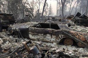 Giật mình những con số khủng khiếp trong thảm họa cháy rừng California