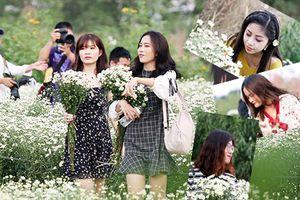 Điều gì ở làng hoa Nhật Tân đang làm các thiếu nữ 'phát cuồng'?