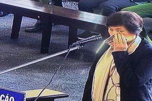 Dì ruột bị cáo Phan Sào Nam khóc nức nở tại tòa