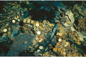 Thợ săn kho báu nộp 500 đồng vàng trị giá 58 tỷ đồng vì không muốn ngồi tù