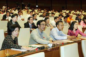Quốc hội biểu quyết thông qua nhiều luật quan trọng trong ngày 19/11