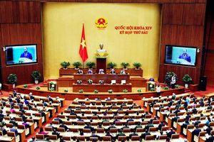 Tuần làm việc cuối cùng, Quốc hội thông qua 8 luật
