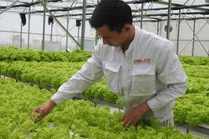 Bắc Ninh đẩy mạnh ứng dụng nông nghiệp công nghệ cao