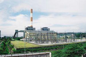 Nhiệt điện Phả Lại bị phạt, truy thu thuế hơn 30,7 tỷ đồng