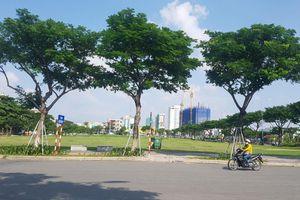 Đà Nẵng chính thức hủy kết quả đấu giá khu đất A20