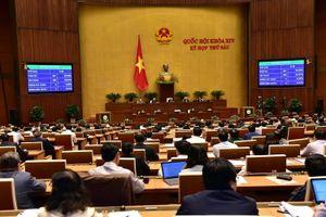 Cảnh sát biển Việt Nam là nòng cốt trong thực thi pháp luật trên biển