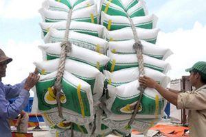 22 doanh nghiệp Trung Quốc được mời mua gạo Việt