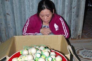 Hà Nam: Bắt giữ vụ vận chuyển hàng trăm quả pháo nổ