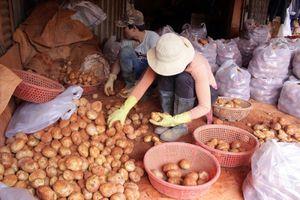 Bộ Công Thương: Tăng giải pháp kiểm soát nông sản ngoại 'đội lốt' hàng Việt