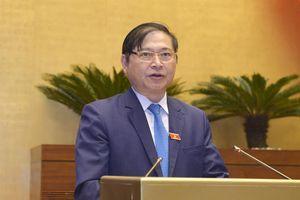 Quốc hội thông qua Luật Chăn nuôi với đa số phiếu tán thành