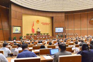 Kỳ họp thứ sáu, Quốc hội khóa XIV bước vào tuần làm việc cuối