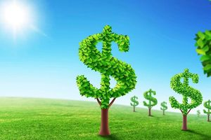 Sứ mạng doanh nghiệp xanh