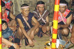 Khám phá lễ hội dân tộc Ba Na tại 'Ngôi nhà chung'