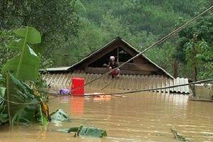 Những trận lũ lụt kinh hoàng nhất trong lịch sử Việt Nam