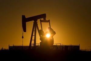 Giá dầu thế giới 20/11: Giá dầu lại quay đầu giảm