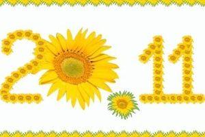 Ngày nhà giáo VN: Lời chúc 20/11 hay, ý nghĩa nhất dành cho thầy cô