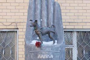 Câu chuyện đẫm nước mắt phía sau bức tượng cô chó nhỏ Laika và khát vọng chinh phục vũ trụ