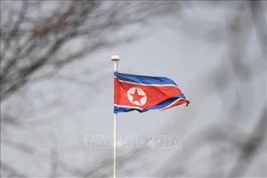 Truyền thông Triều Tiên: Nhật Bản cổ súy 'mù quáng' các biện pháp trừng phạt của Mỹ