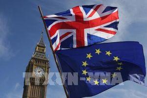 Giới doanh nghiệp ủng hộ dự thảo thỏa thuận Brexit