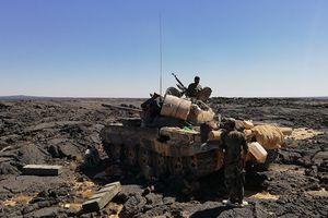 Chiến sự Syria: Giải phóng Al-Safa, quân chính phủ làm chủ toàn miền Nam