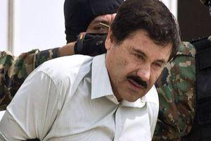 Hành động máu lạnh của trùm ma túy khét tiếng 'El Chapo' Guzman qua lời kể nhân chứng